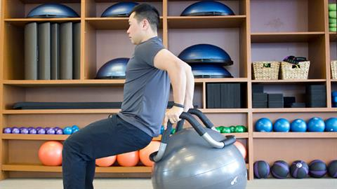 Tricep Dips on the Halo® Trainer with Stability Ball™