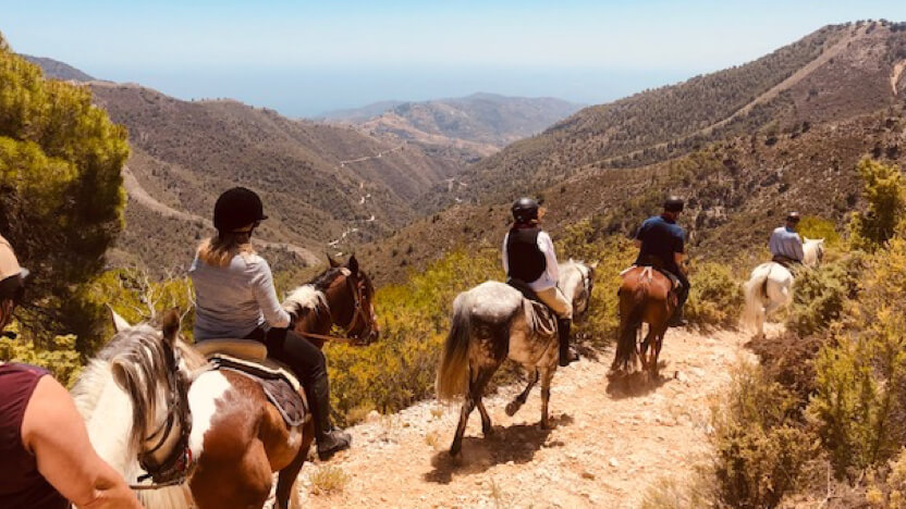 Equestrian riders travelling in a group