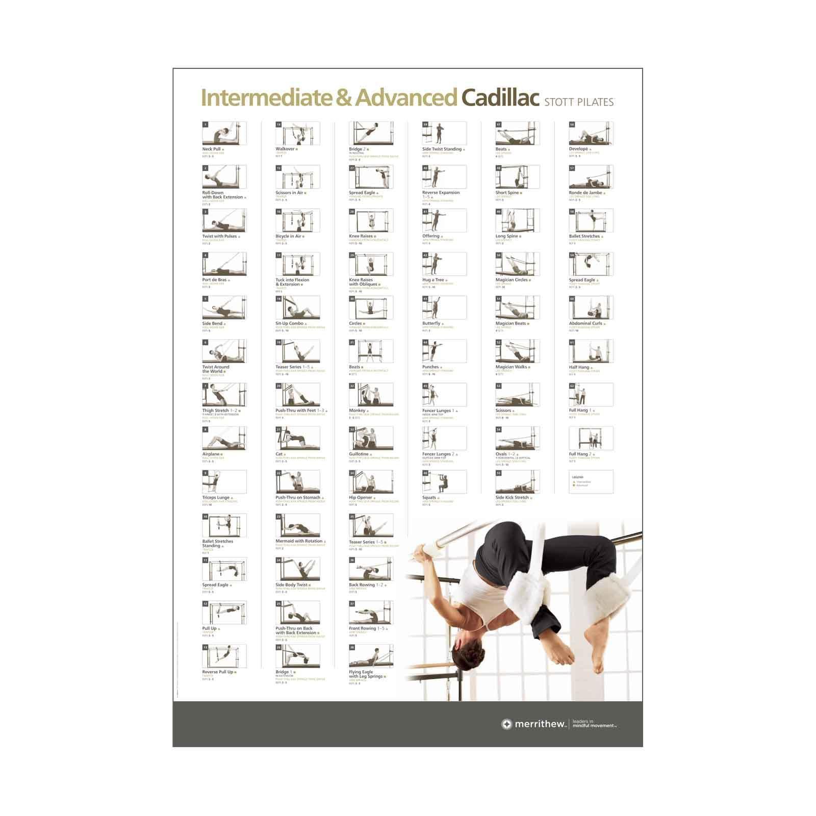 wall chart  advanced cadillac