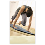 Pilates Poster - Matwork